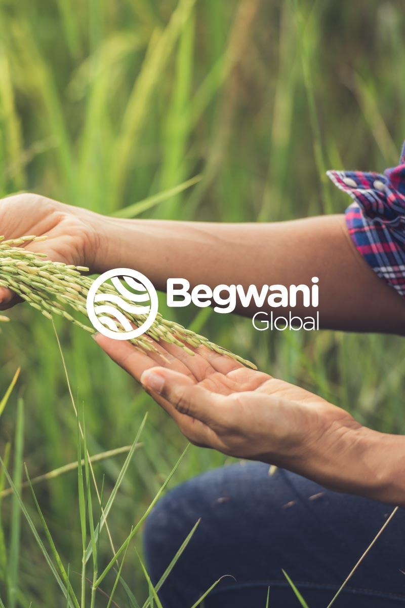 Begwani Global